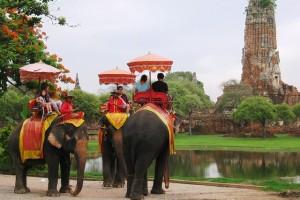 Elefantes_Tailandia1