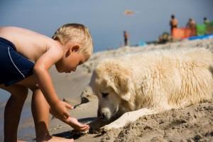 ninos-perro-playa